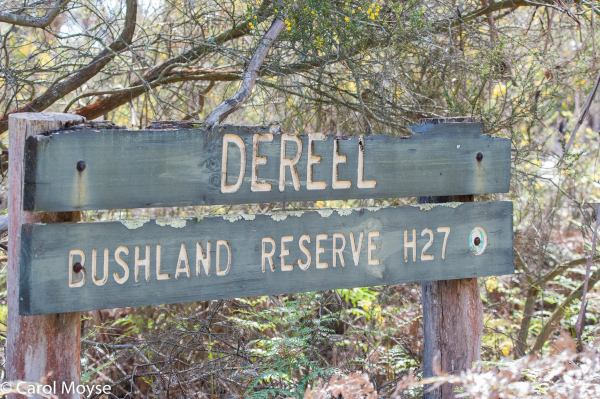 community-planning-process-in-Dereel