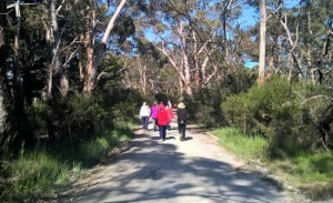 Dereel-walking-Group-stepping-out-on-bush-lined-road
