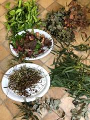 Eco Dye: Natural dyeing elements